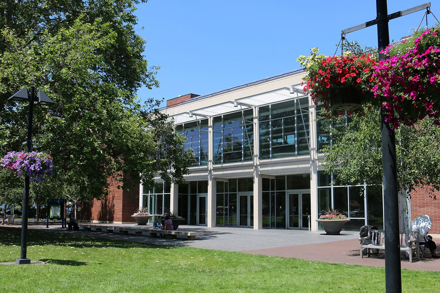 Photo of a library building with trees and flowers and a blue sky.