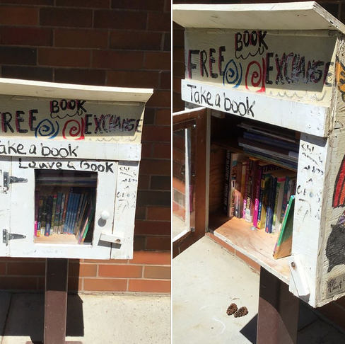 Image of Little Free Library at Fir Grove Elementary.